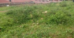 Land for sale in Bweyogerere at 200,000,000.
