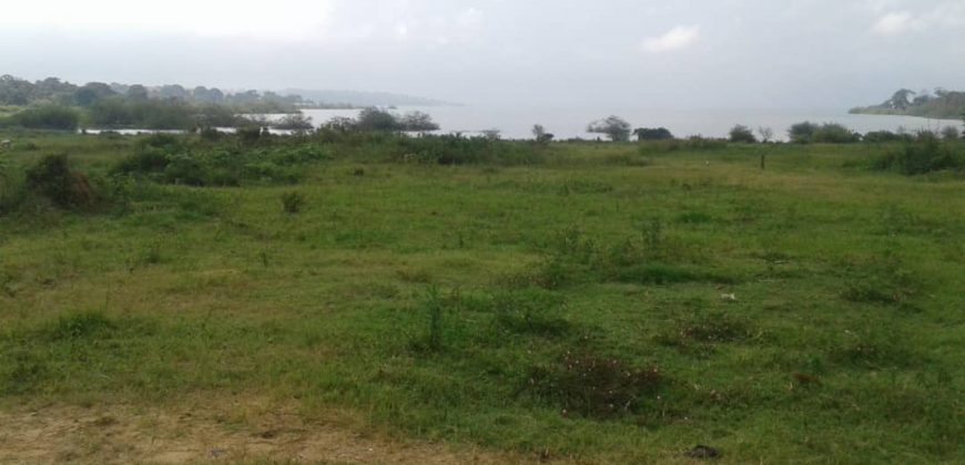 Land for sale in Kira at 60,000,000