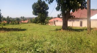 Land for sale in Gayaza at 30,000,000