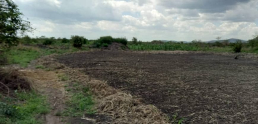 Land for sale in Kikyusa at 6,000,000.