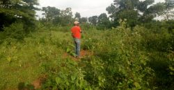 Plot for sale in Kyanja at 200,000,000