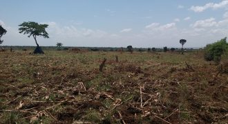 Land for sale Kayi Mityana at 5,000,000.