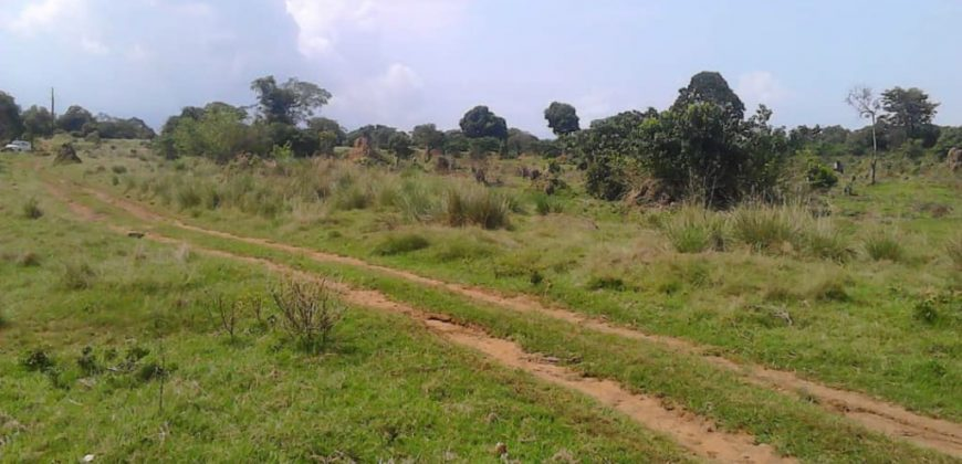 Land for sale in Garuga at 400,000,000.