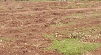 Plot for sale in Kyanja at 130,000,000