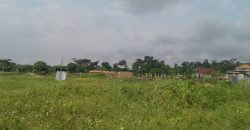 Land for sale in Mukono Kiyunga at 45,000,000
