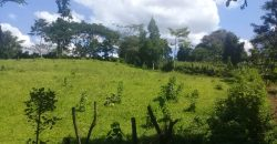 Land for sale in Kiwend at 15,000,000.