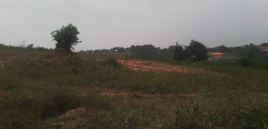 Land for sale in Manyangwa at 16,000,000
