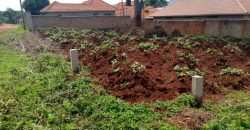 Land for sale in Kira at 100,000,000
