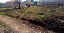 Land for sale in Kira at 70,000,000
