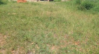 Land for sale in Kira at shs 40,000,000