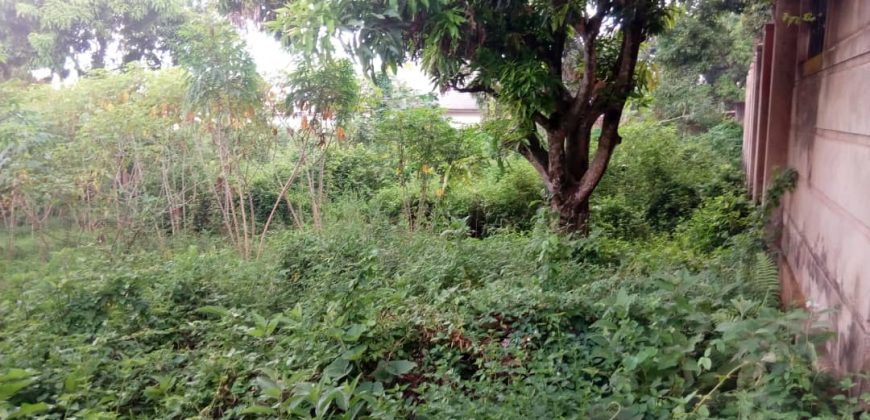 Land for sale in Namulanda at 200,000,000.