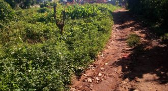 Land for sale in Mukono at 35,000,000