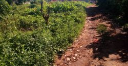 Plot for sale in Seeta Buwate at 95,000,000