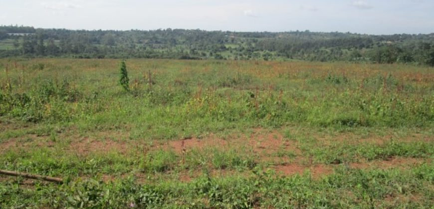 Land for sale in Kabanyolo at 35,000,000.