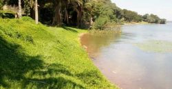 Land for sale in Namasagali at 1,500,000,000.