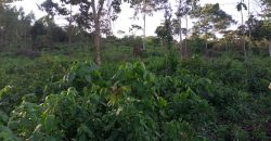 Land for sale in Mukono at 15,000,000.