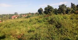 Land for sale on Bombo road at 180,000,000.