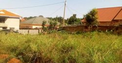 Land for sale in Kira at 75,000,000.