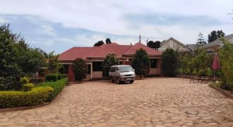 1bedroom self contained, fully furnished in kisaasi at 600k