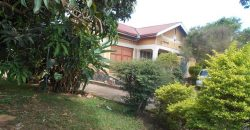 On Sale! 1 Acre 700m Namugongo