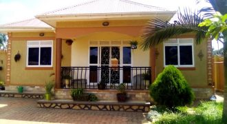 House in Gayaza makenke 3 bedroom,2 bthrm, 12 decimals, fully furnished, with guest wing and maid wing, tittle in table asking 220M ugx negotiable