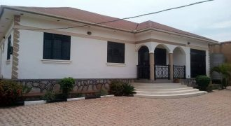 Standalone for rent at #1m ugx found in #Kyanja (kumusanvu). 4 bedrooms, 3 bathrooms beautiful gardens