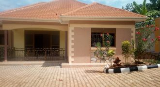 3bedroom 2bathroom with servant quarters seated on 18decimals located in kitende along Entebbe road just few meters from the main road. Asking price 300m