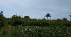 Land for sale in Nakasajja Dundu at 14,000,000