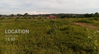 Land for sale at 23,000,000 in Nsube Mukono