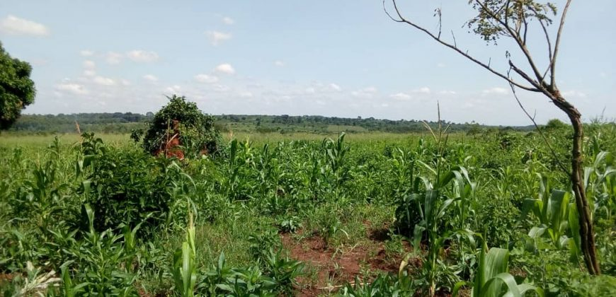 Land for sale in Mpoma Kiswero at 13,000,000