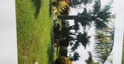 Two acres & 20 Decimals on sale in Entebbe