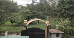 3 BEDROOM HOUSE FOR RENT IN KOLOLO
