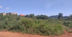 Plot for sale in Kitende Sissa at 14,000,000