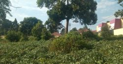 Plot for sale in Nsambwe Mukono at 15,000,000.