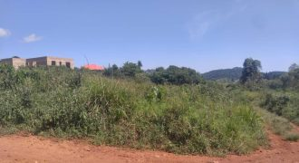 Plot for sale in Kitende Sisa at 14,000,000