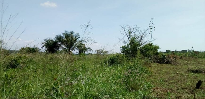 Land for sale in Ndazabazade at 25,000,000.