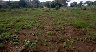 Plot for sale in Jogoo Budugala at 15,000,000.
