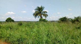 Plot for sale in Nsambwe Mukono at 16,000,000.