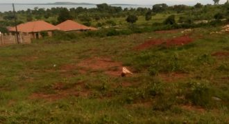 Plot for sale in Gayaza Nakasajja at 10,000,000.