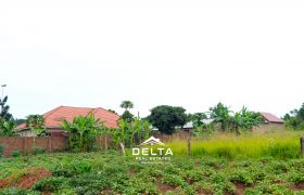 Plots for sale in Mukono town