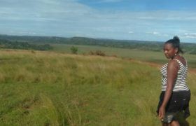 Land for sale at Ugx.7million