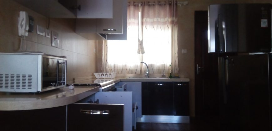 Furnished apartment for rent in Luzira