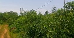 Land for sale in Kasanjje Entebbe at shs 17,000,000