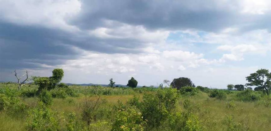 Plot for sale in Nakasajja at shs 15,000,000
