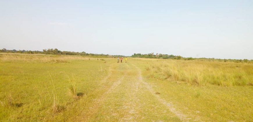 Plot for sale in Mukono Kisowera at 15,000,000