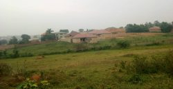 Plot for sale in Gayaza Kabanyolo at 40,000,000