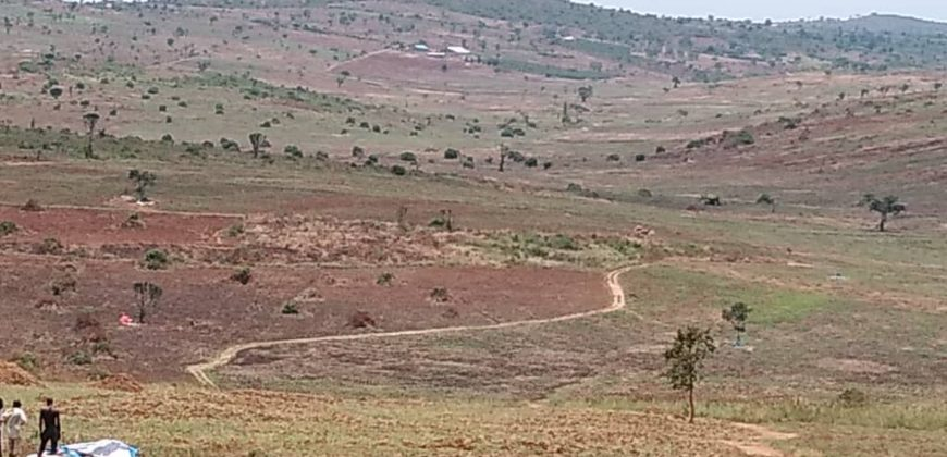 Land for sale in Mityana at shs 3,000,000