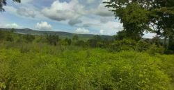Plots for sale in Mukono Katosi Road t shs 25,000,000