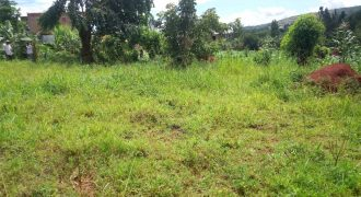Land for sale in Luwero at shs 15,000,000