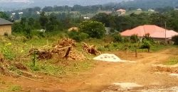 Plot for sale in Kira at 55,000,000